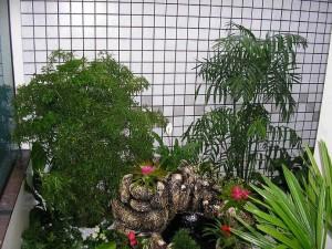 jardim-de-inverno-pequeno-13
