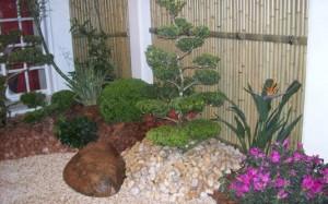 jardim-de-inverno-pequeno-17