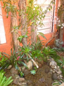 jardim-de-inverno-pequeno-5