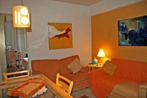 sala-pequena-decorada-foto-5
