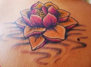 flor-de-lotus-14