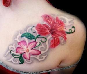 flor-de-lotus-17