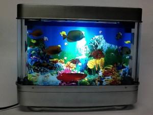 aquario-de-peixes-18